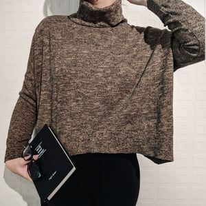 Zara Turtleneck Cropped Sweater